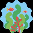 Microalgae-based Omega-3 Supplements
