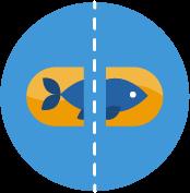 Should I Split Up My Dosage Of Fish Oil Pills