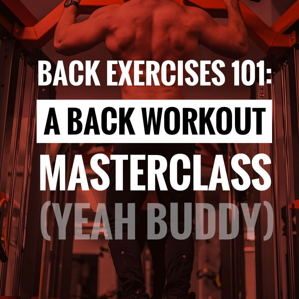 Back Exercises 101: A Back Workout Masterclass