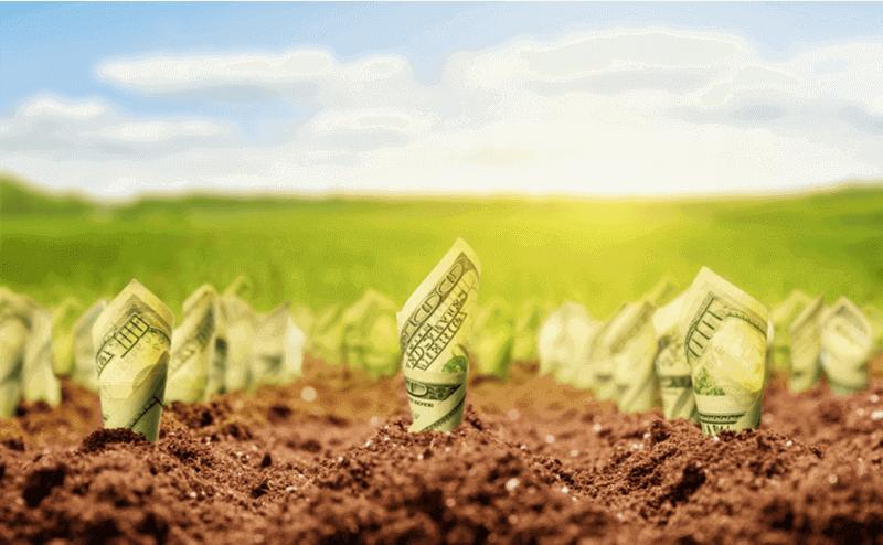 21 Ways in 2021 to save money when buying CBD oil.