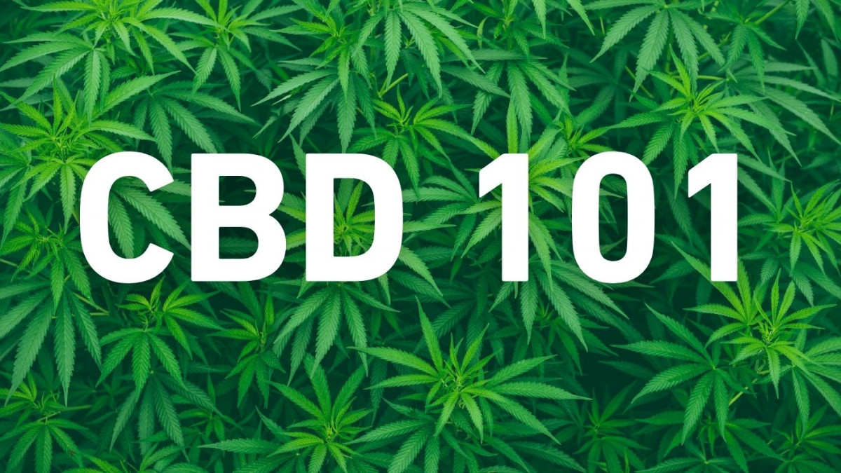 CBD 101- Everything you need to know