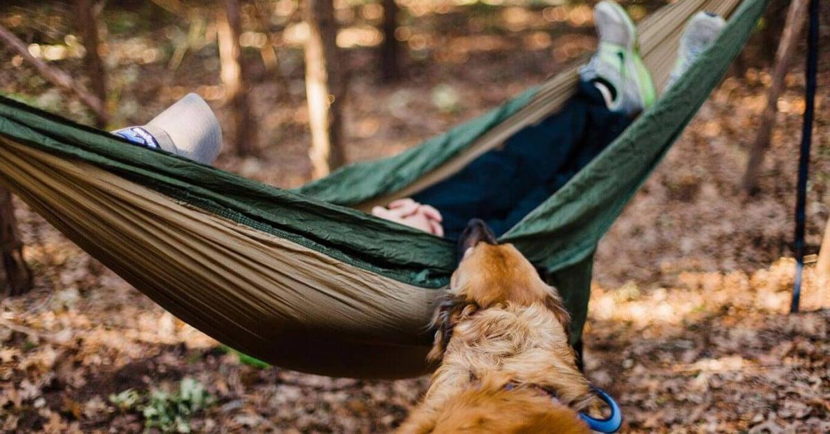 6 Master Hammock Camping Tips for Beginner Campers In 2021