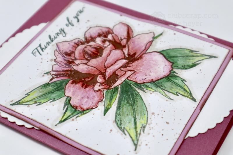 Peony Blossom Card #clubscrap #stamping #masking #coloring #peony #florals