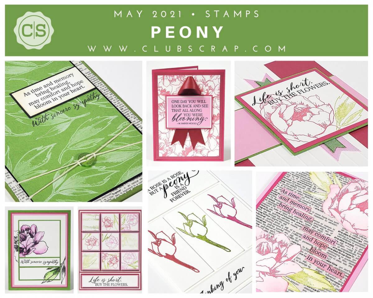 Peony Spoiler - Stamps #clubscrap