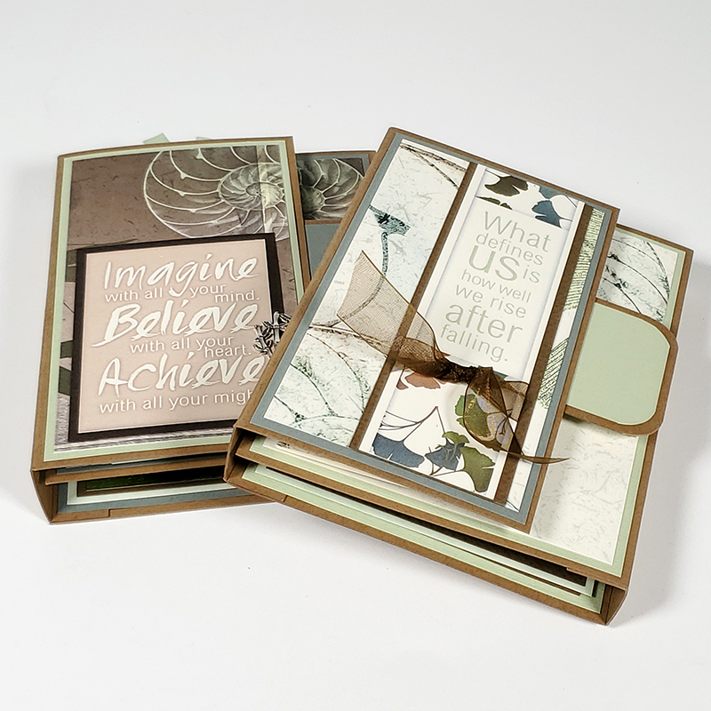 Renewal Twin Trifold Albums