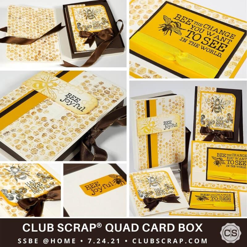 Quad Card Box Promo