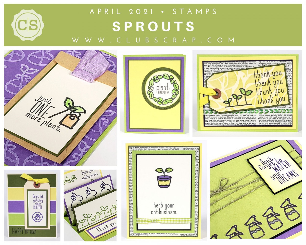 Sprouts Cards by Club Scrap #clubscrap