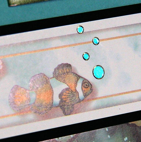 Lagoon Details - Deluxe Layouts and Greetings to Go Cards