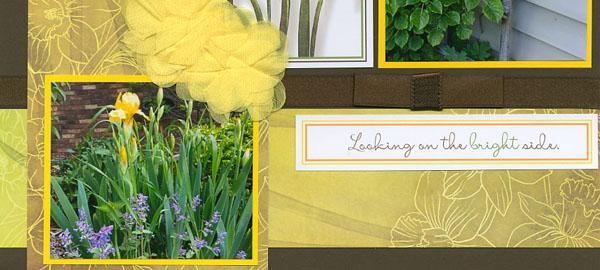 Daffodils pages - A glimpse into my garden.