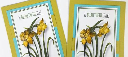 Easy cards with Daffodils hybrid and a bonus formula.