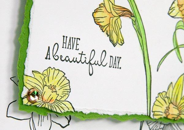 Daffodils Stamps - making cards with Kay