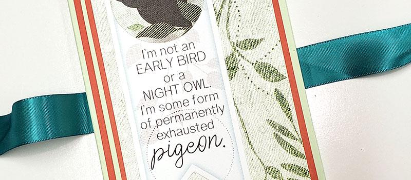 Make An Aviary Explorer's Folio with free instructions