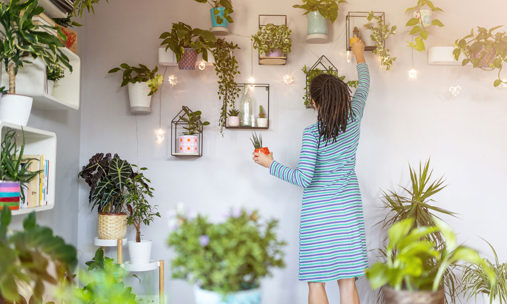 Why Being a Plant Parent is Good for You!