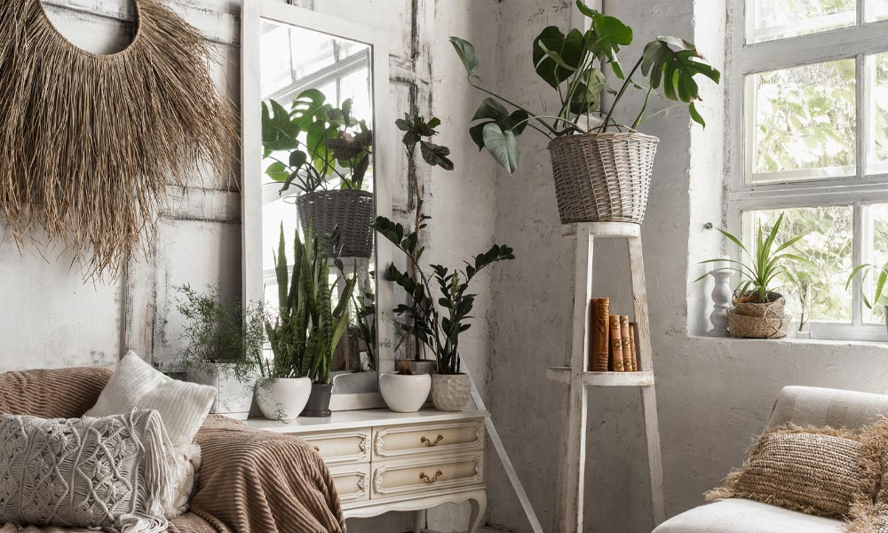 How to Style Your Home with Houseplants