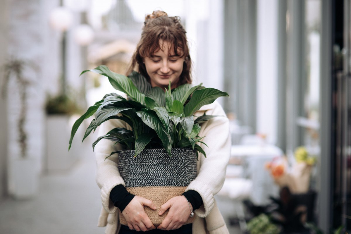 How to have a successful long term relationship with your plants