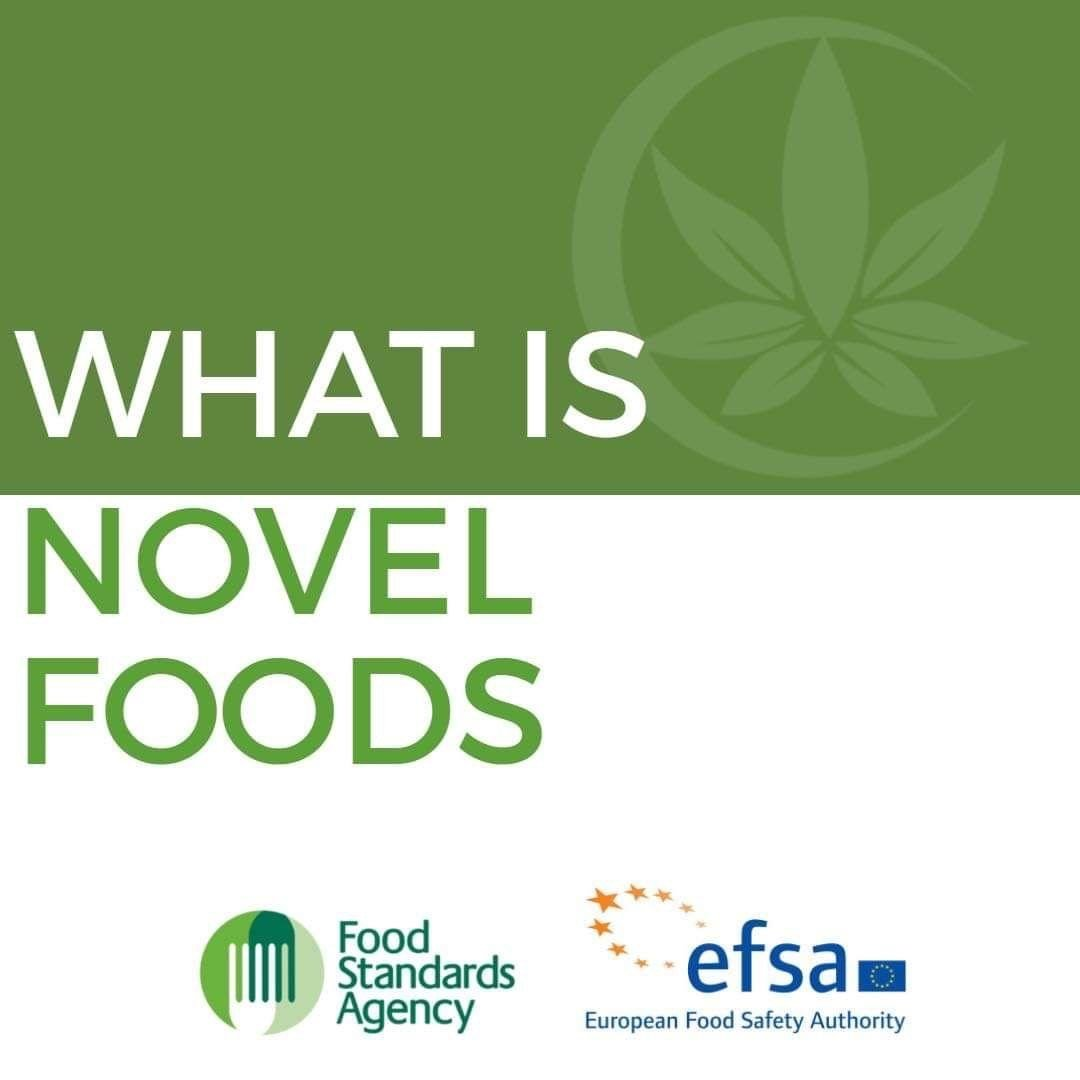 What is Novel Foods ?