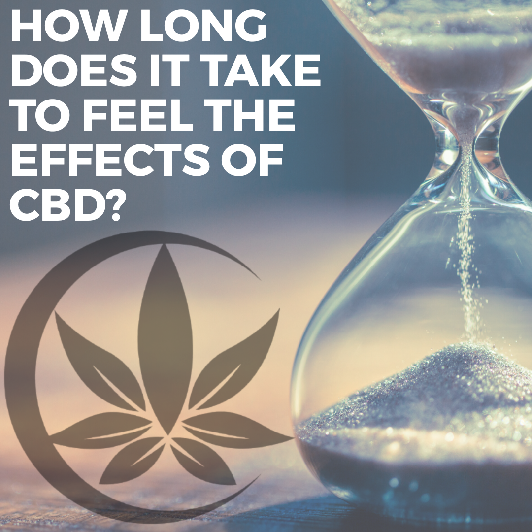 How long does it take to feel the effects of CBD?