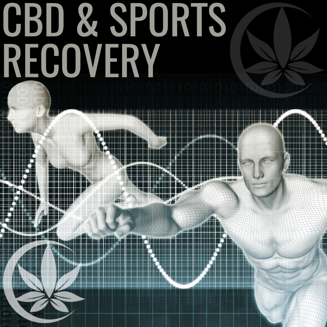 CBD & Sports Recovery, what is the appeal?