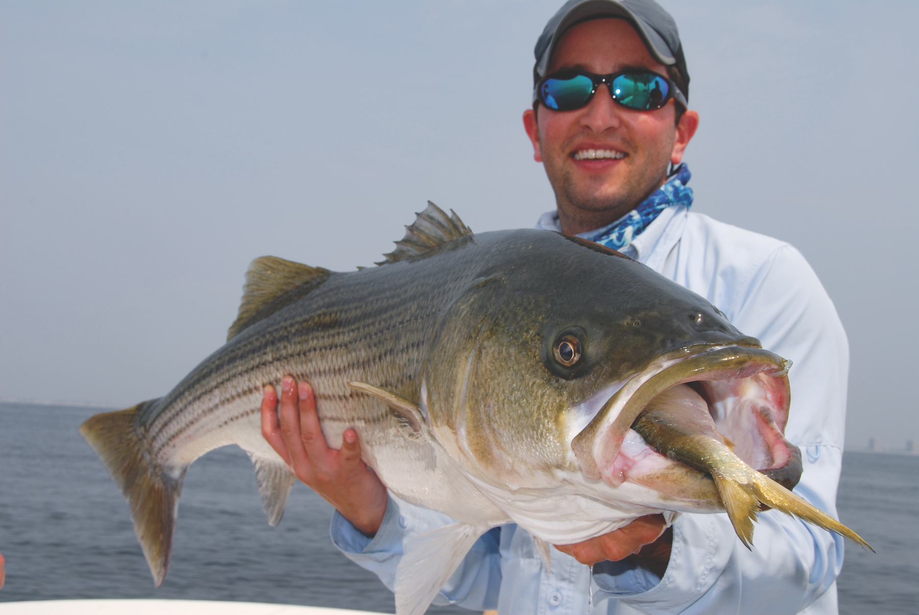 The State of Menhaden Management