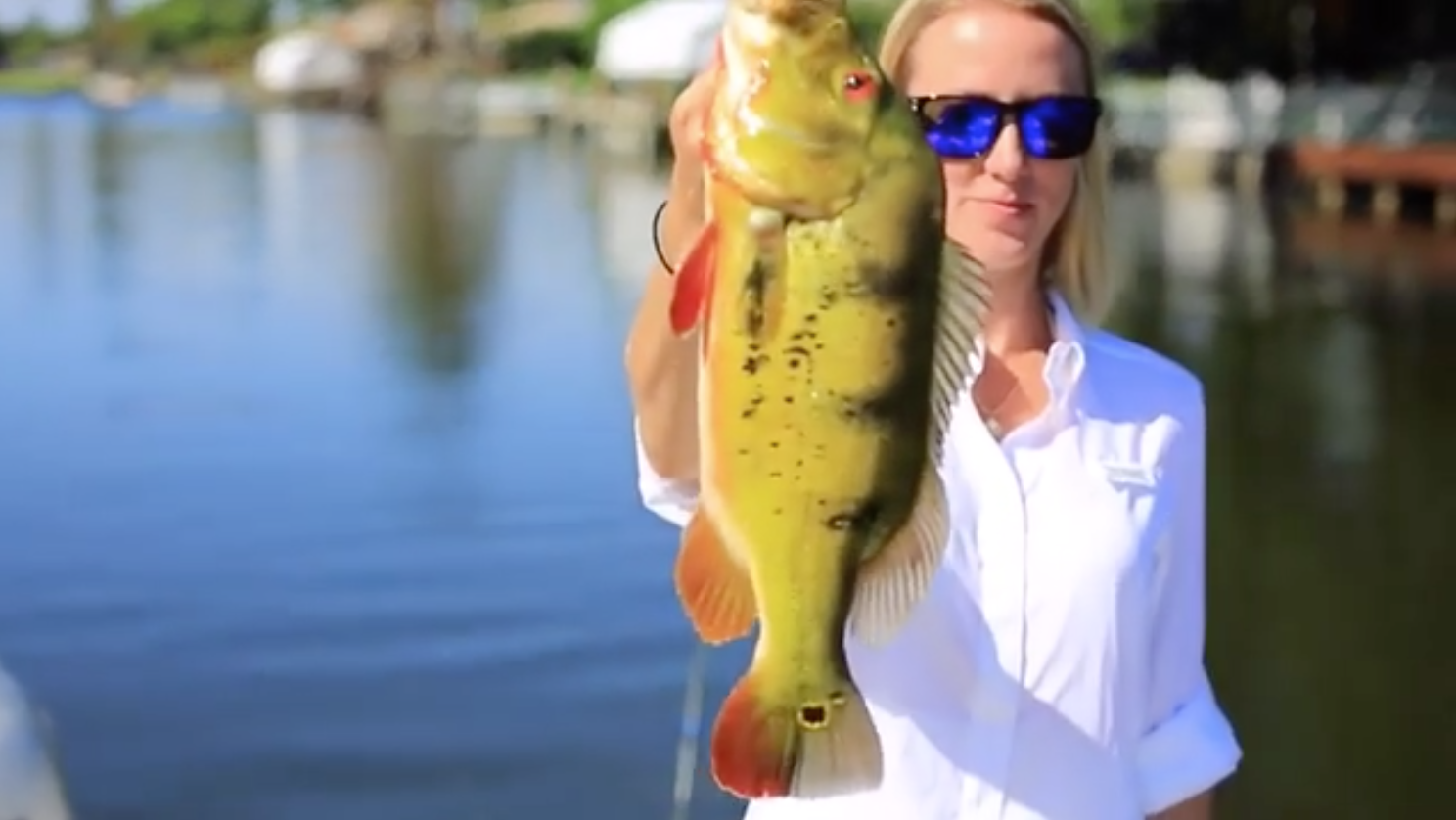 VIDEO: Vicky Stark Fishes for Peacock Bass in Florida