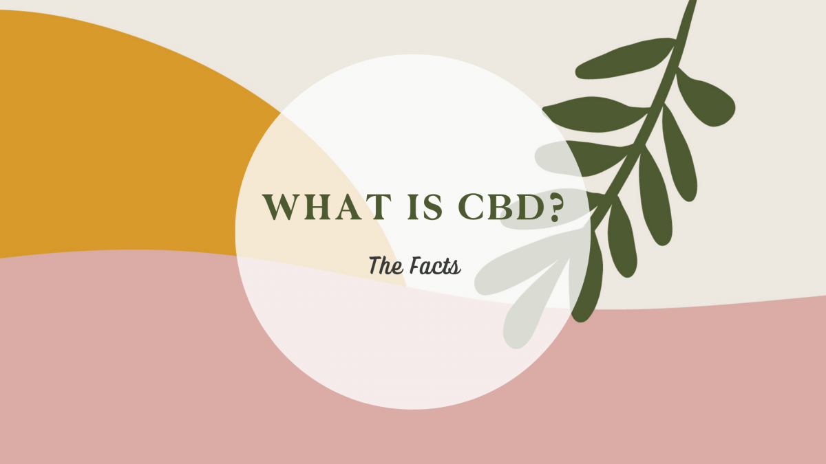 What is CBD and Just Why is it Transforming People's Lives?
