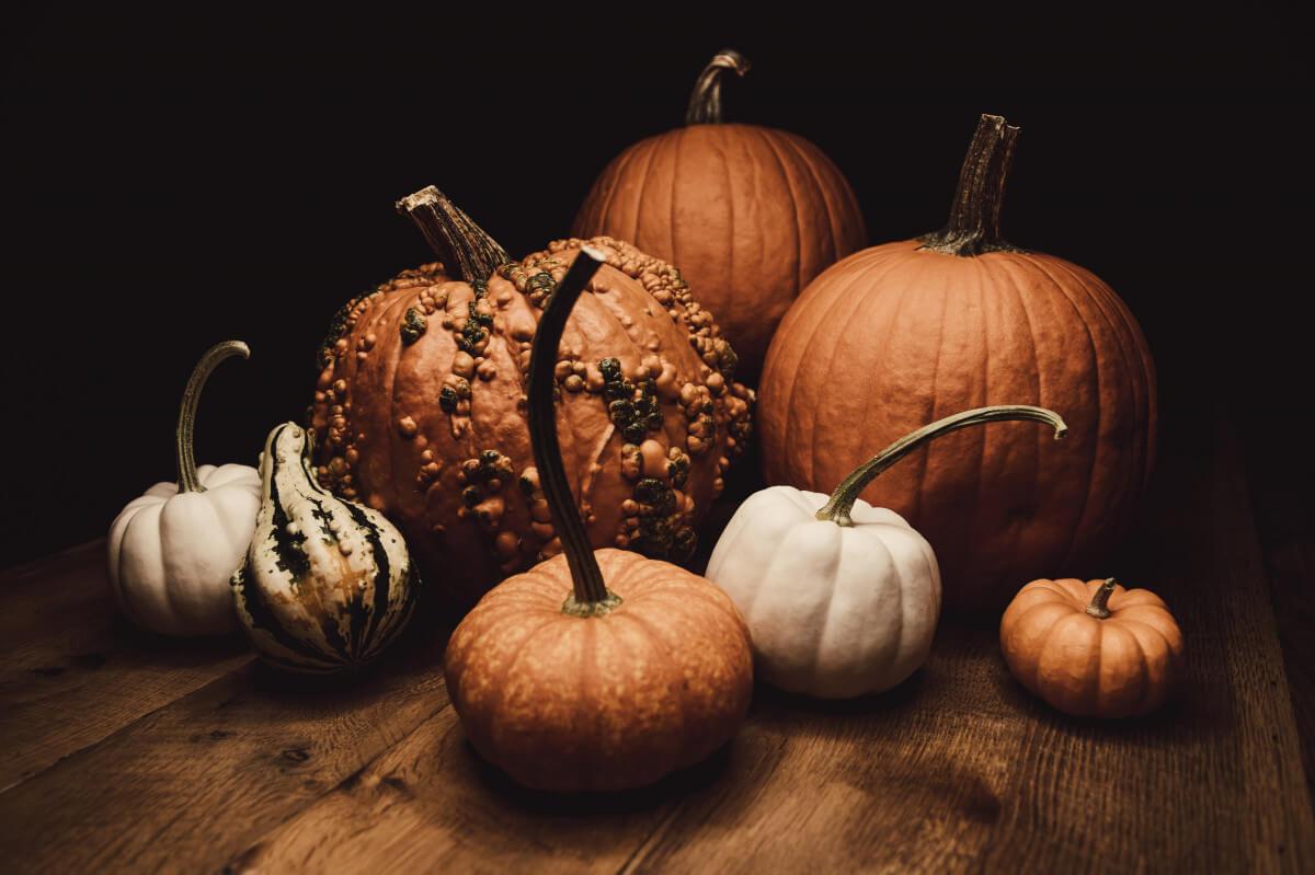 Spooky Season Healthier Recipe Round-Up