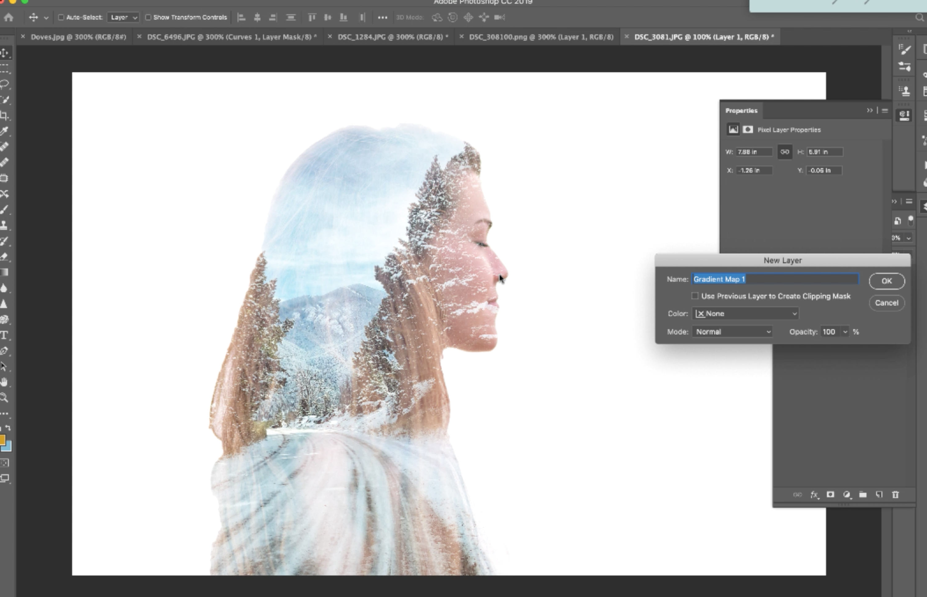 Create a Double Exposure in Photoshop