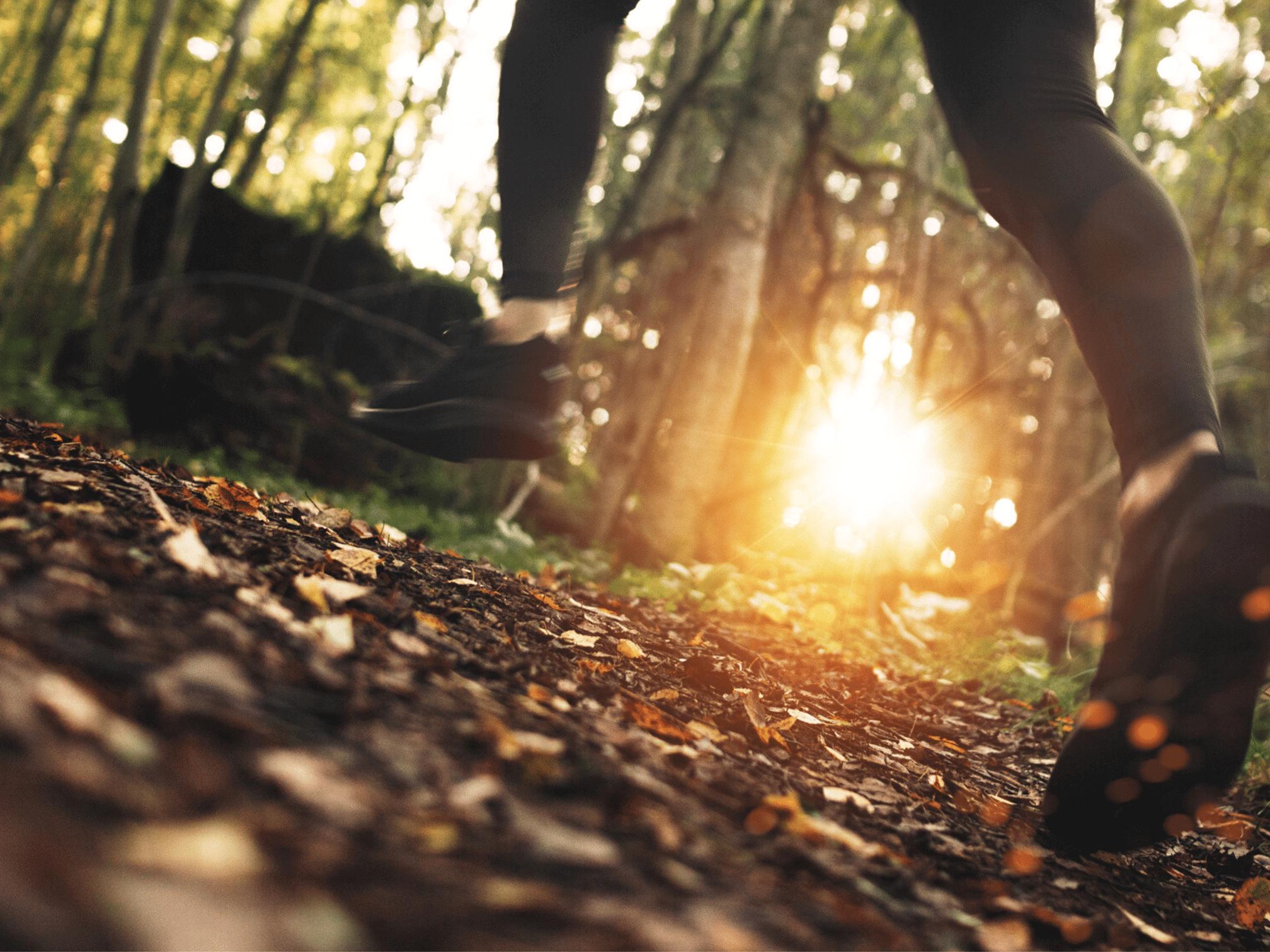 Takayna/Tarkine Ultra – Run to Save Wild Places