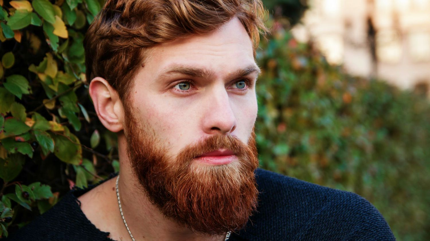 The Care And Keeping Of A Ginger Beard