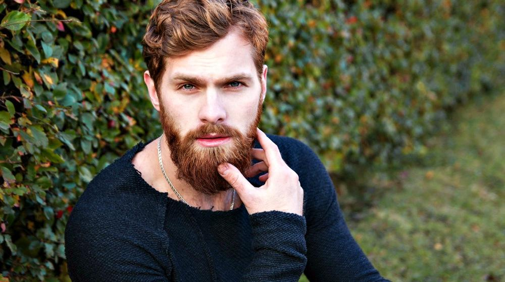 What Beard Conditioner Should You Use? | 13 Best Beard Conditioners