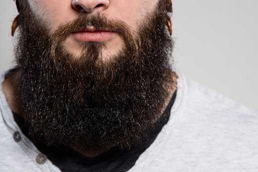 Create a Luscious Beard: How To Locate the Best Beard Oil for Men