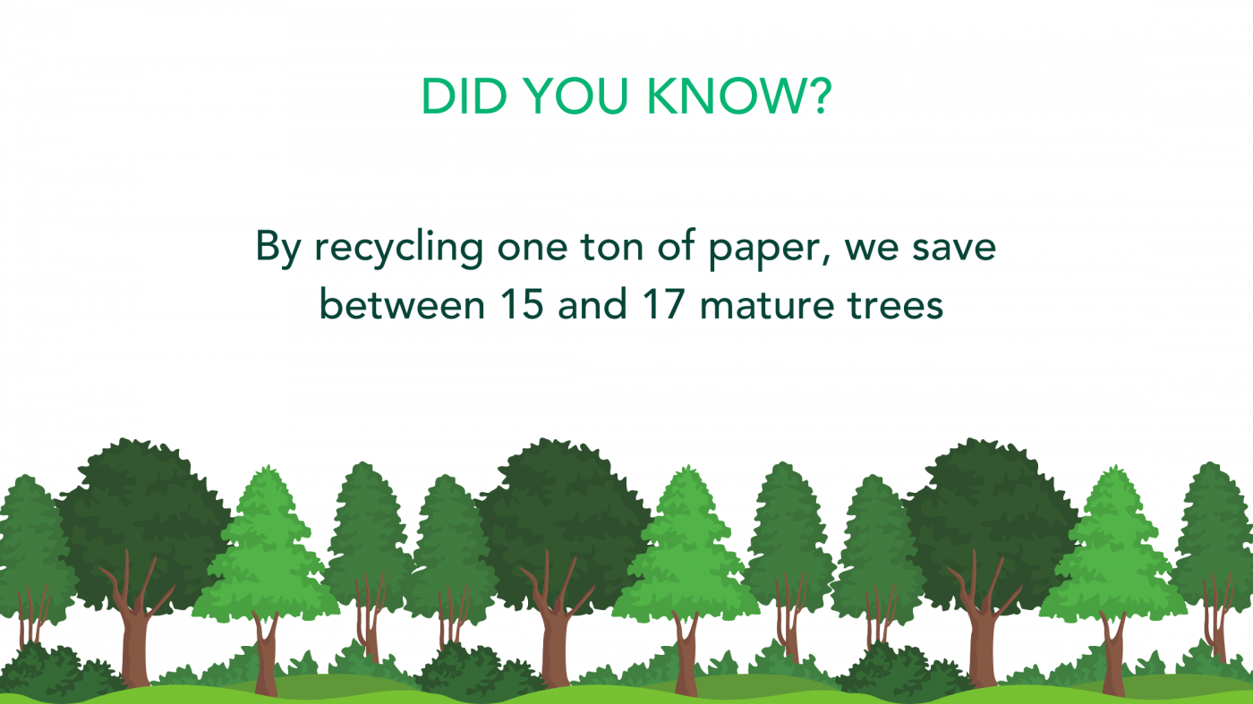 By recycling one ton of paper we save between 15 and 17 mature trees