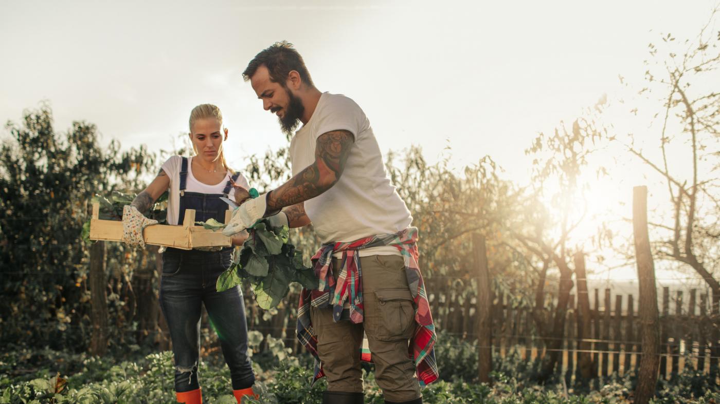 5 Benefits of Organic farming