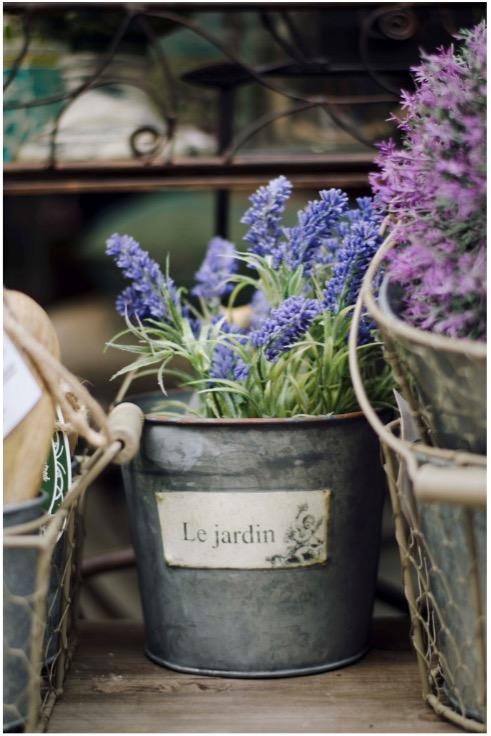 Garden Quotes   Vego Garden